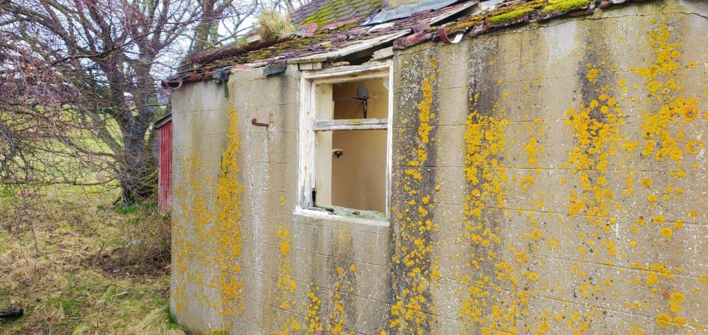 farmhouse outside wall